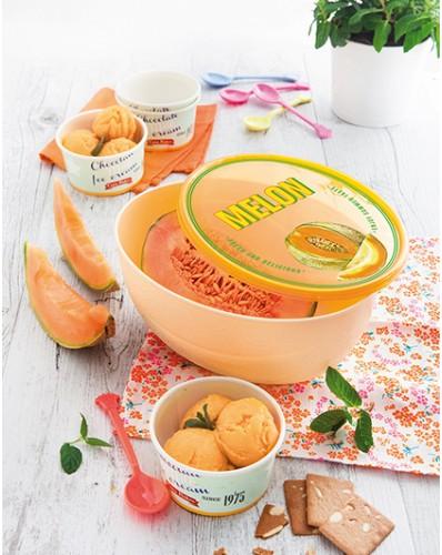 SNIPS FRESH SAVER - pojemnik na melona 2L